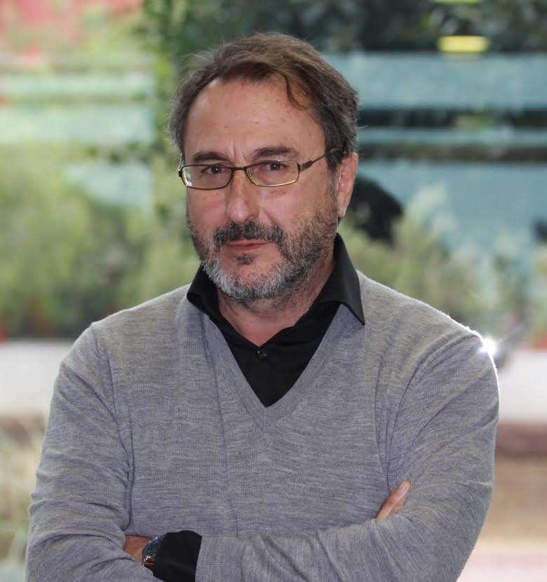 D. Miguel Gallego Roca
